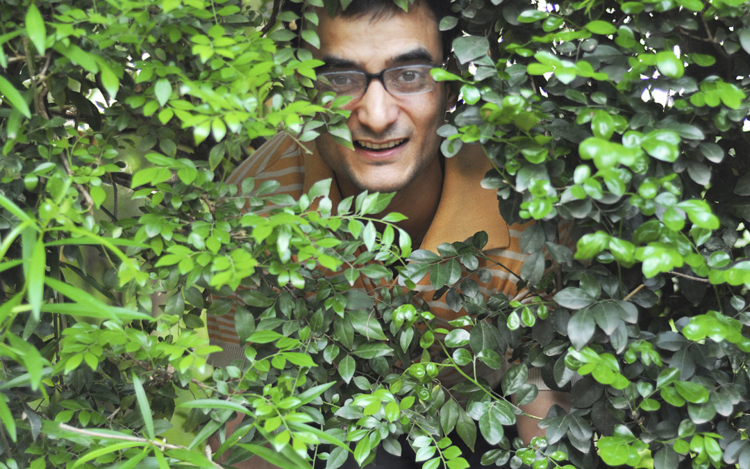 Image result for peeping tom bushes